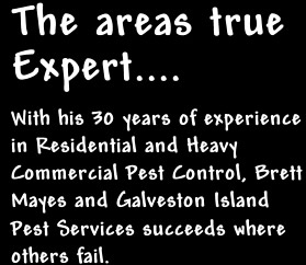 Brief DFescription of Galveston Island Pest Control